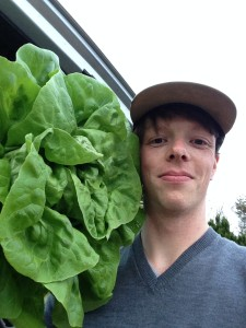 Heres Aled with a lettuce that is bigger than him!